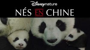NÉS EN CHINE : Bande-annonce du film DisneyNature