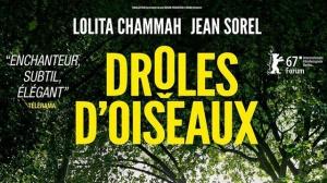 DRÔLES D'OISEAUX (2017) : Bande-annonce du film