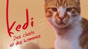 KEDI - DES CHATS ET DES HOMMES : Bande-annonce du film