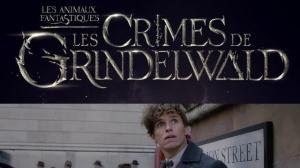 LES ANIMAUX FANTASTIQUES 2 - LES CRIMES DE GRINDELWALD : Bande-annonce du film en VF