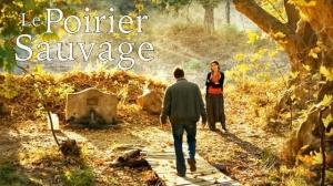LE POIRIER SAUVAGE : Bande-annonce du film de Nuri Bilge Ceylan