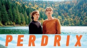 PERDRIX : Bande-annonce du film avec Swann Arlaud