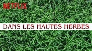 DANS LES HAUTES HERBES : Bande-annonce du film Netflix d'après Stephen King en VOSTF