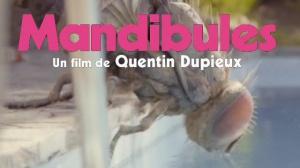 MANDIBULES (2020) : Bande-annonce teaser du film de Quentin Dupieux