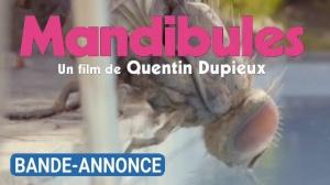 MANDIBULES (2020) : Nouvelle bande-annonce du film de Quentin Dupieux