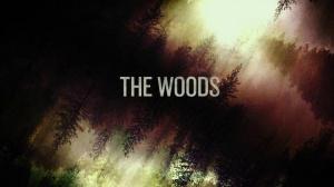 THE WOODS (2016) : Bande-annonce Teaser du film